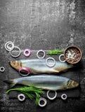 与洋葱圈、莳萝和香料的被盐溶的鲱鱼 免版税库存照片