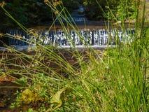 与流动沿路的急流的小河 免版税库存照片