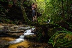 与流动的山小河的探索的豪华的绿色gullys 库存照片