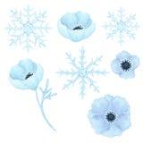 与浅兰的花和雪花的汇集 免版税库存图片
