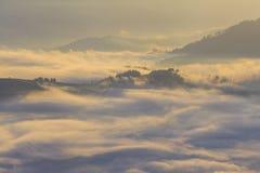 与浓雾的惊人的山风景 库存图片