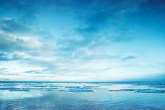 与浮动冰片段和天空的冬天沿海风景 免版税图库摄影