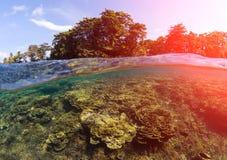 与海和天空的双重风景 海景分裂照片 热带海岛绿叶 库存图片