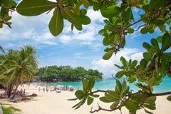 与海和绿色叶子的热带天堂旅行照片 库存照片