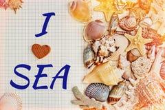 与海壳包括的口号的被打开的日志 库存图片