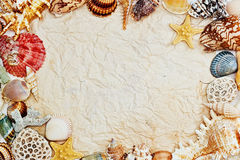 与海壳框架的被弄皱的纸  免版税库存照片
