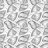 与海壳的传染媒介无缝的样式 库存照片