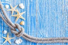 与海壳的海洋绳索 图库摄影
