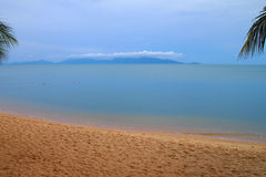 与海岛棕榈树的热带海滩 免版税库存图片