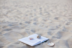与海扇壳的书在空白海沙 图库摄影
