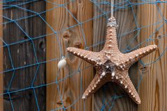 与海星的海星背景和在被风化的木材板条、设计和装饰的蓝色网 免版税库存图片