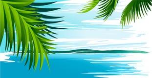 与海洋和棕榈叶的假日背景 免版税库存图片