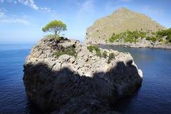 与海湾的美丽如画的海风景 马略卡 免版税库存图片