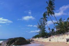 与海滩和棕榈树的令人惊讶的风景 泰国苏梅岛 免版税图库摄影