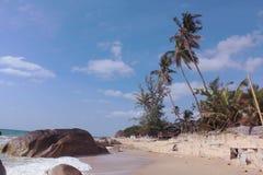与海滩和棕榈树的天堂风景 泰国苏梅岛 库存图片