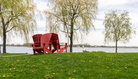 与海滩睡椅海鸥和树的都市港口场面 免版税库存照片