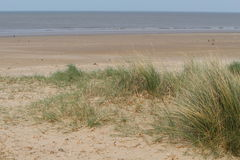 与海的沙丘 免版税库存照片