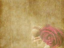 与海的葡萄酒美丽的红色玫瑰轰击在老黄色纸背景的假日卡片 库存图片
