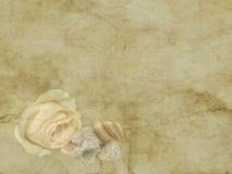 与海的葡萄酒美丽的黄色玫瑰轰击在老纸背景的假日卡片 免版税库存照片
