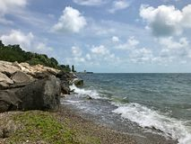 与海草的多岩石的海滩 免版税库存图片