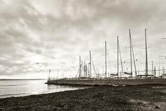 与海草的有帆柱的海滩和小游艇船坞 图库摄影