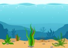 与海草的水下的风景 与礁石的海景 与海草的海洋海底剪影 在舱内甲板的自然场面 库存照片