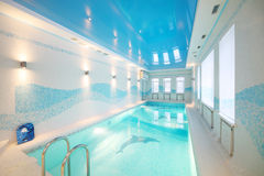 与海豚和在底层清楚的水的图象的室内游泳池 库存照片
