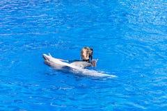 与海豚的妇女跳舞在水池 免版税库存照片