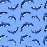 与海豚的无缝的背景。传染媒介例证。 免版税库存照片