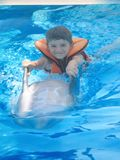 与海豚的男孩游泳 免版税库存图片