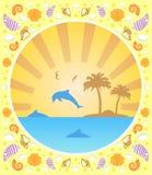 与海豚的背景夏天 库存照片