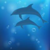 与海豚的水下的背景 免版税图库摄影