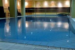 与海豚设计的室内淡水水池 库存照片