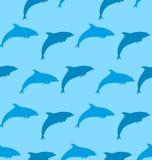 与海豚,海洋哺乳动物动物的无缝的样式 图库摄影