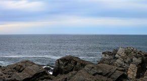 与海鸥的大西洋风景 免版税库存照片
