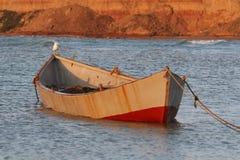 与海鸥的小船 免版税图库摄影