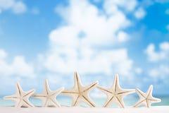 与海洋、海滩、天空和海景的红色海星 免版税库存图片