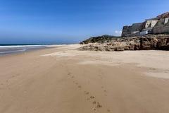 与海滩的风景 库存图片