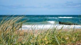 与海滩草的安静的波罗的海海滩 免版税库存照片
