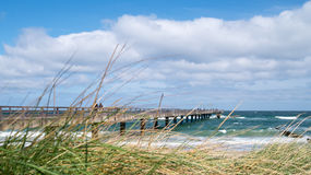 与海滩草的安静的波罗的海海滩 库存图片