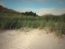 与海滩草的沙丘 免版税图库摄影