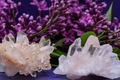 与淡紫色花围拢的赤铁矿包括的喜马拉雅清楚的石英群 免版税库存照片