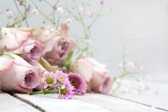 与淡色玫瑰和雏菊的静物画 库存照片