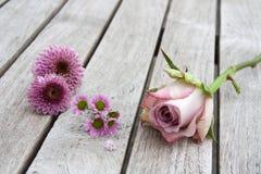 与淡色玫瑰和雏菊的静物画 图库摄影