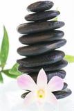 与淡色紫色石斛兰属兰花的黑禅宗石头 免版税库存图片