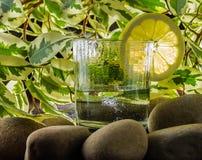 与淡水太阳的新鲜的清楚的水 免版税图库摄影