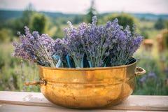 与淡紫色植物的室外装饰装饰金属古铜罐的 免版税库存图片