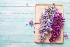 与淡紫色花和旧书的明信片 库存照片