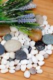 与淡紫色花的河岩石 库存图片