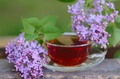 与淡紫色花的清凉茶 免版税库存照片